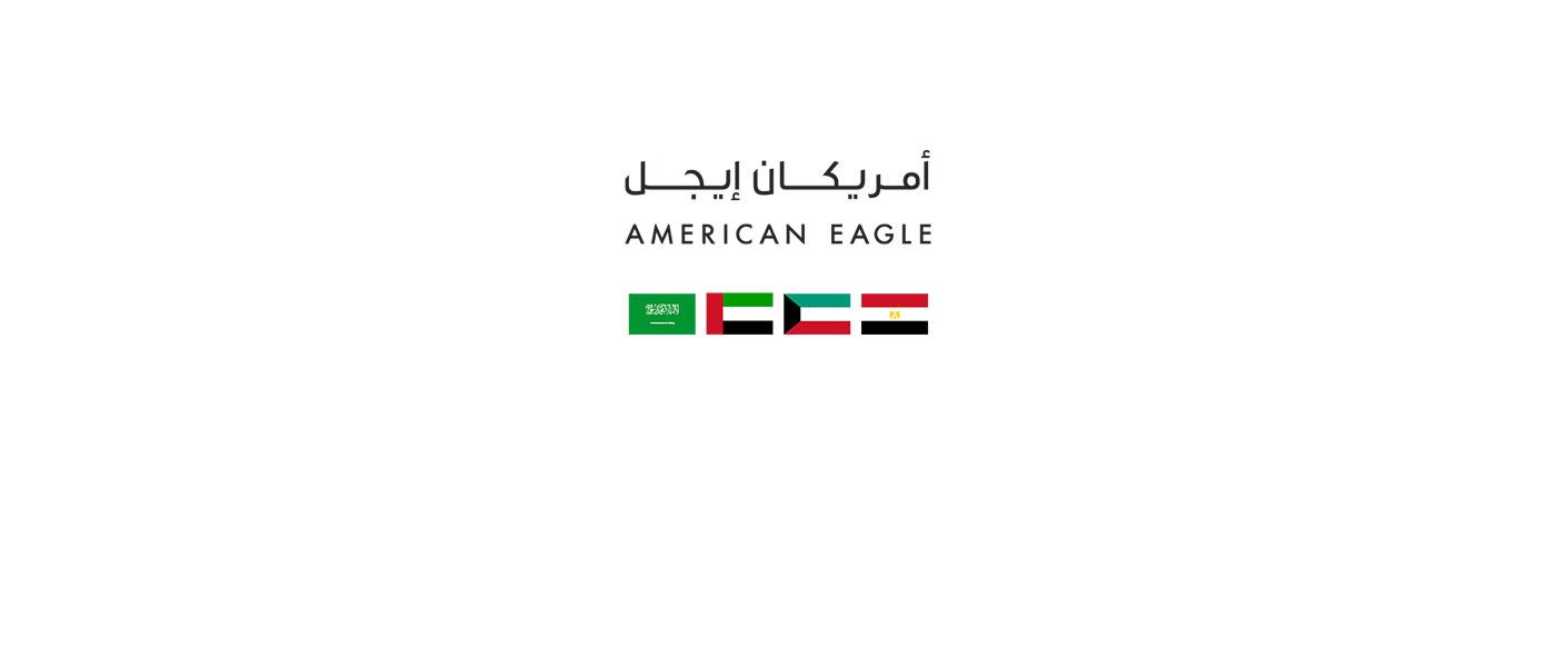 American Eagle Banner